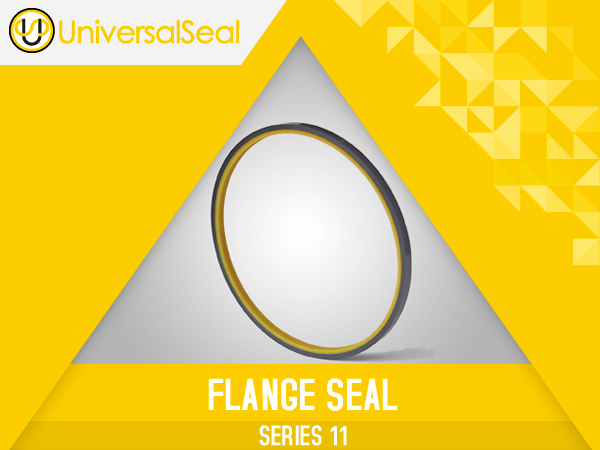 Flange (static face Seals)